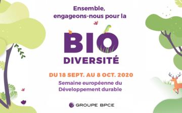 """Affiche """"Ensemble engageons-nous pour la Bio diversité"""""""